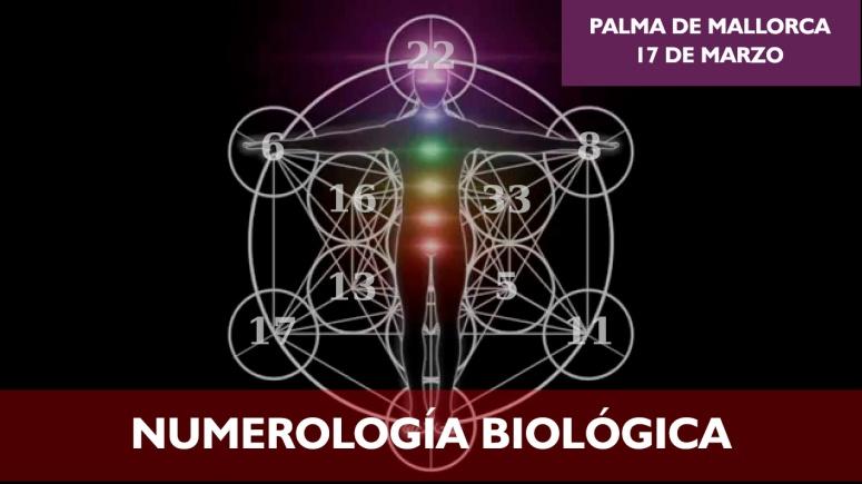 bionumerologia-face