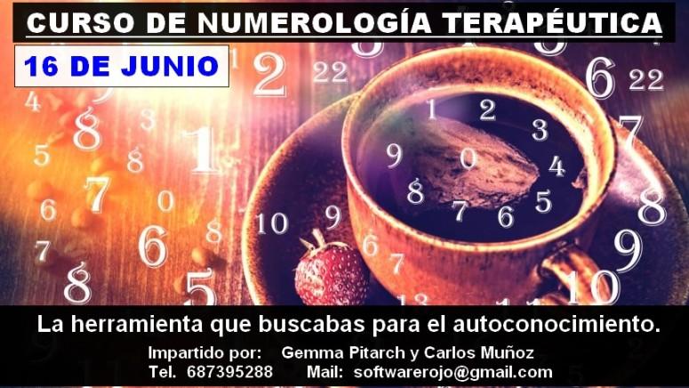 cartel numerologia palma